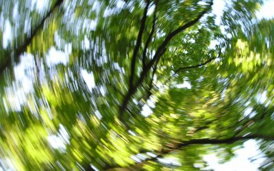 Dizziness subsides with chiropractic
