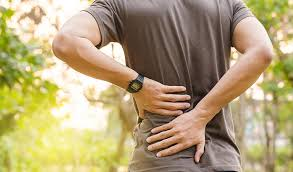 Back Pain Affects Entire Nervous System